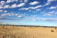 Beach line 8